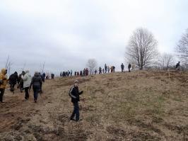 100 ozolu meža stādīšana Lūznavā_16