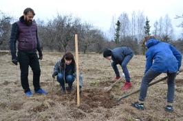 100 ozolu meža stādīšana Lūznavā_32