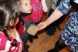 Lūznavas un Ozolaines pagastu bērnudārza audzēkņi apmeklē muzeju Rēzeknē 22.02.2017._8